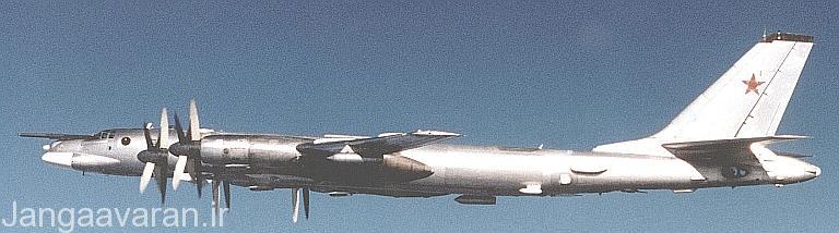 توپلوف95-کا22 در این تصویر میتوان قسمت عقب بمب افکن که فاقد توپ دفاعی است را داد
