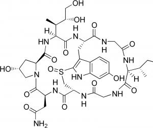 سم موجود در کلاهک قارچ که یک پروتئین پیچیده مقاوم به حرارت میباشد