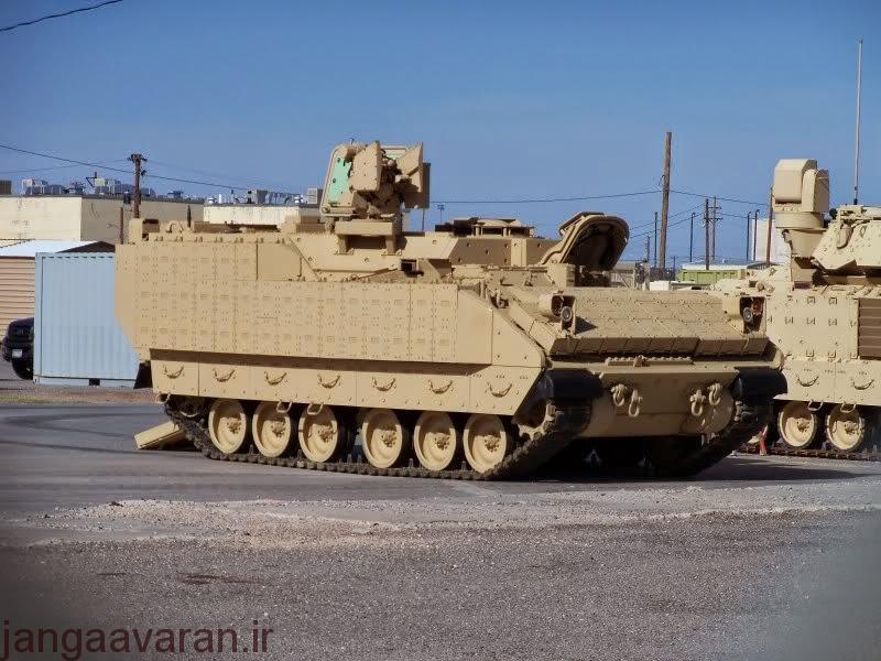 ampv-1