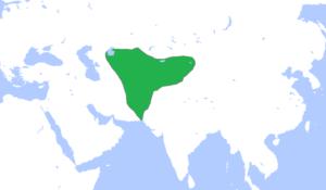 نیروی دریایی ایران در گذرتاریخ (قسمت دوم)